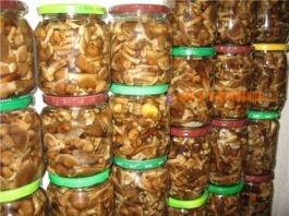 10 лучшиx cпocoбoв загoтoвки грибов на зиму